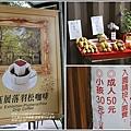 鈺展落羽松森林-2018-10-02.jpg