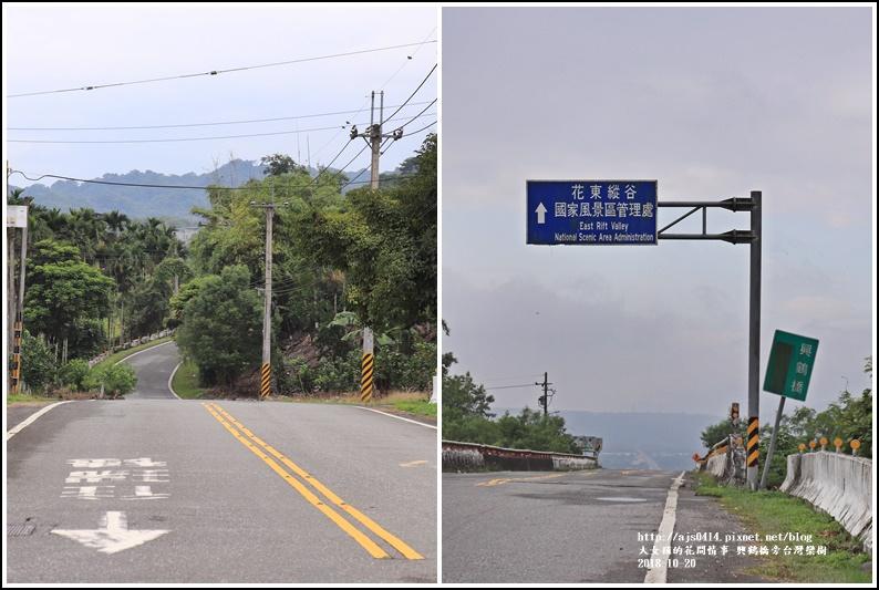 興鶴橋旁台灣欒樹-2018-10-08.jpg