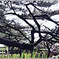 臥松園區-2018-11-14.jpg
