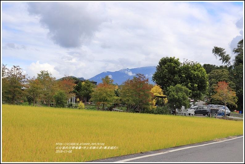 池上伯朗大道(黃金稻田)-2018-11-07.jpg