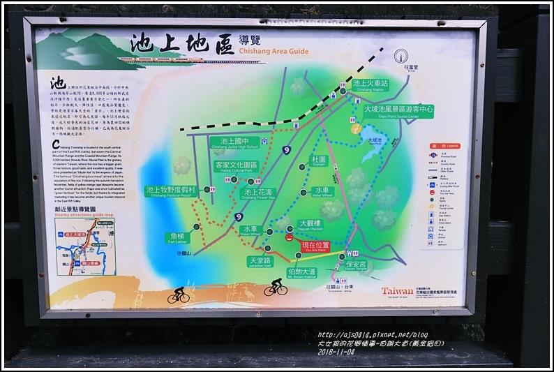池上伯朗大道(黃金稻田)-2018-11-41.jpg