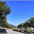 富里段黃金稻田-2018-11-05.jpg