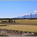 富里段黃金稻田-2018-11-08.jpg