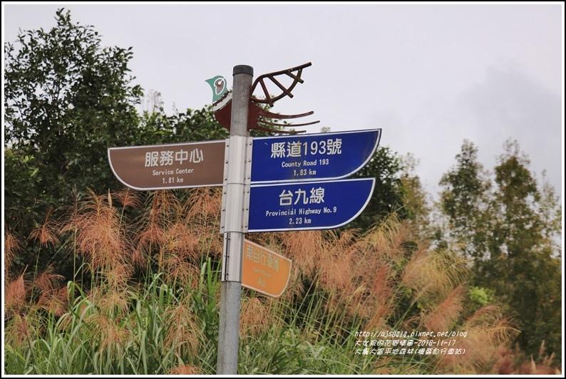 大農大富平地森林(楓葉自行車道)-2018-11-33.jpg