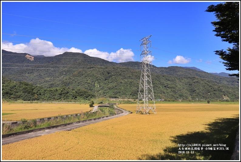富里段黃金稻田-2018-11-07.jpg