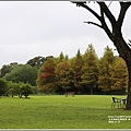 雲山水植物農場-2018-11-29.jpg