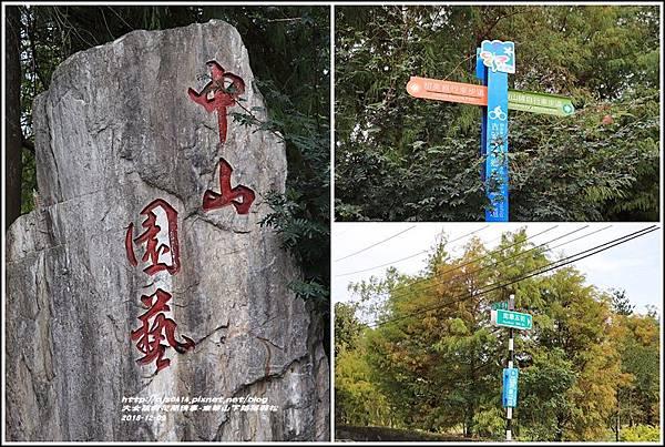南華山下路落羽松林-2018-12-24.jpg
