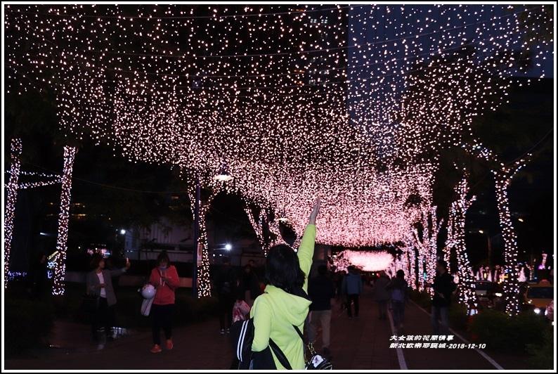 新北歡樂耶誕城-2018-12-19.jpg