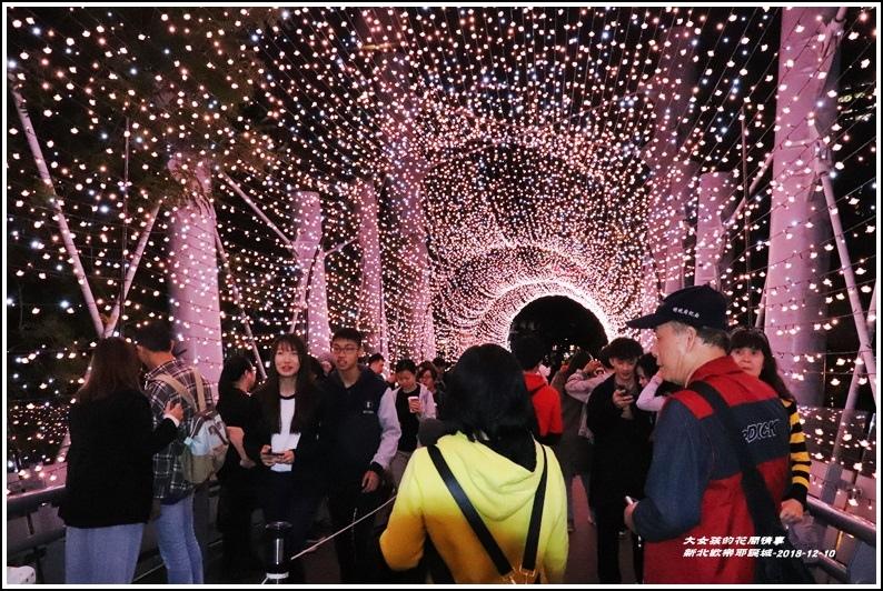 新北歡樂耶誕城-2018-12-38.jpg