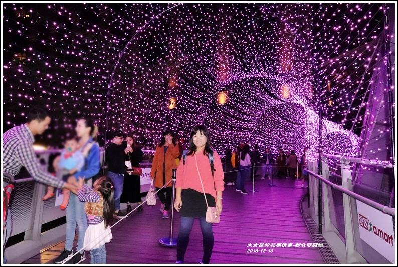 新北歡樂耶誕城-2018-12-71.jpg