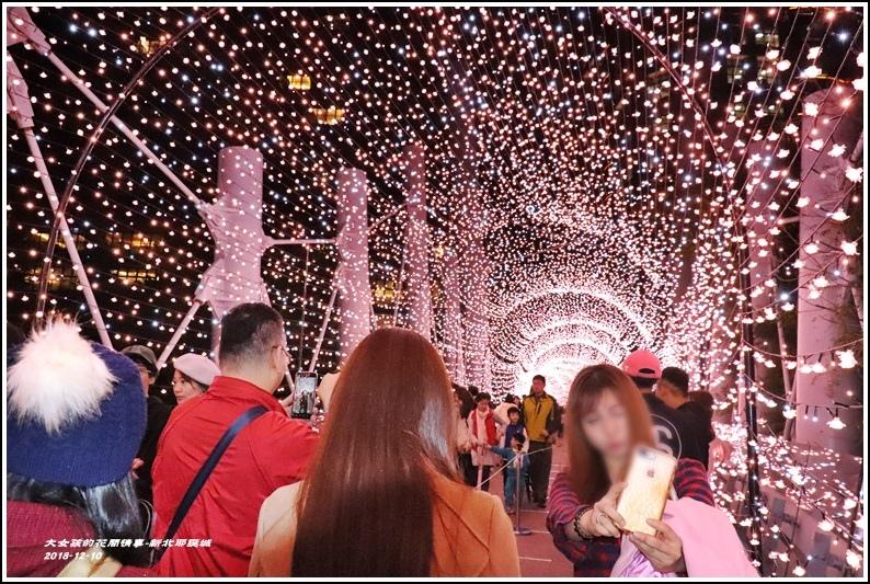 新北歡樂耶誕城-2018-12-74.jpg