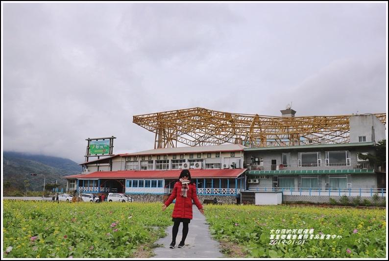 富里鄉農會花海-2019-01-09.jpg