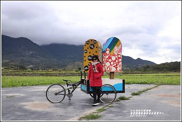 富里鄉農會花海-2019-01-08.jpg