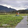 富里鄉農會花海-2019-01-20.jpg