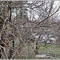 羅山瀑布梅園-2019-01-10.jpg