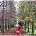 花蓮落羽松(雲山水)-2018-12-37.jpg