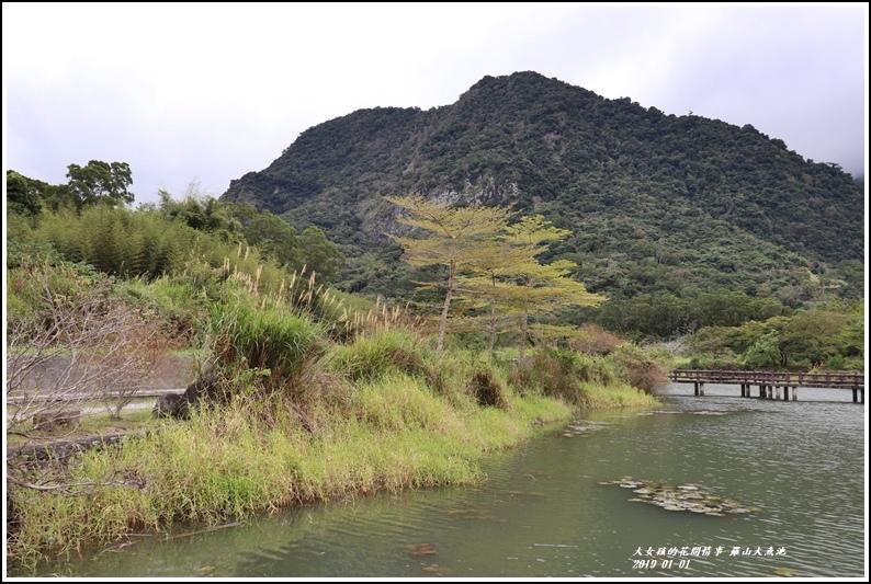 羅山大魚池-2019-01-03.jpg