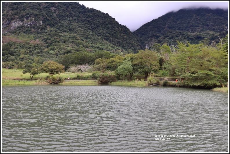 羅山大魚池-2019-01-05.jpg