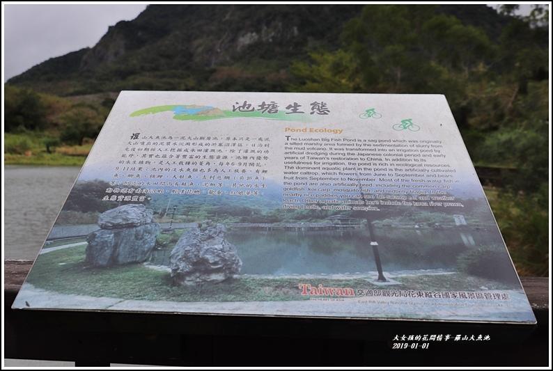 羅山大魚池-2019-01-07.jpg