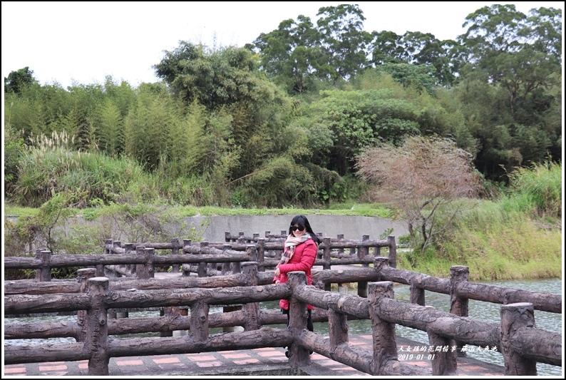 羅山大魚池-2019-01-09.jpg