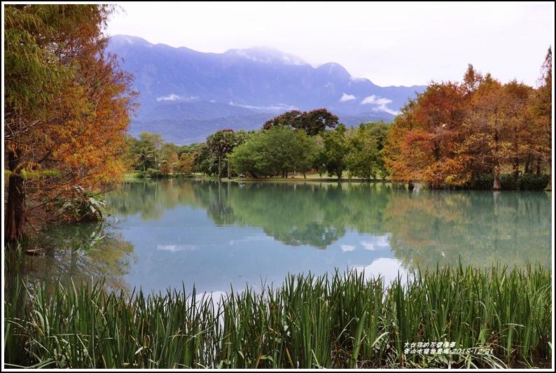 雲山水植物農場-2018-12-05.jpg