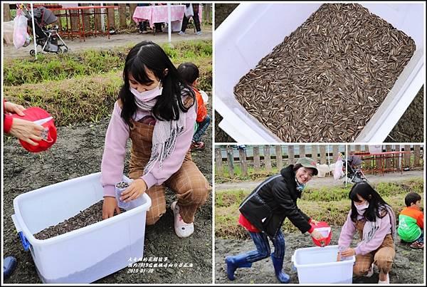 預約2019瑞穗鐵道向日葵花海-2019-01-04.jpg