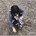 預約2019瑞穗鐵道向日葵花海-2019-01-26.jpg