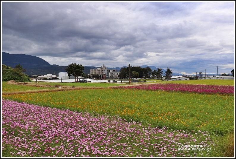 關山花海-2019-01-04.jpg