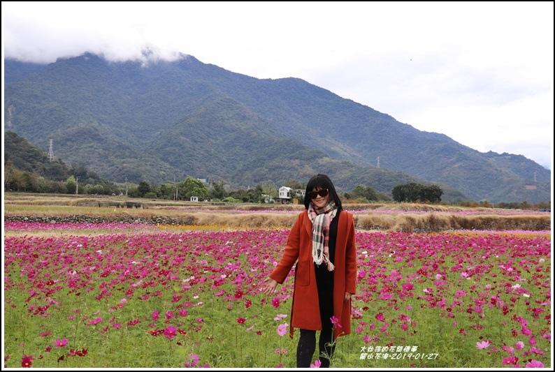 關山花海-2019-01-17.jpg
