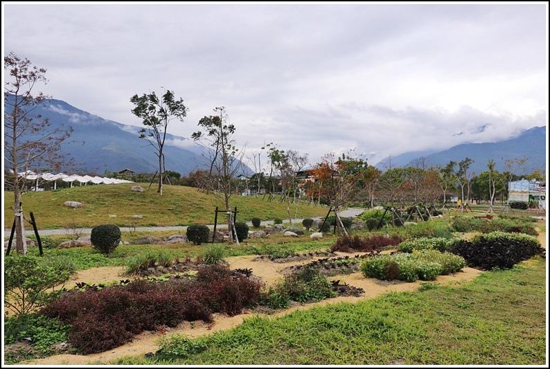 池上四季花園-2019-01-09.jpg