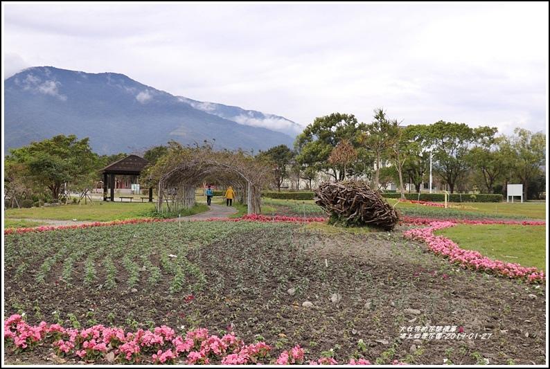 池上四季花園-2019-01-10.jpg