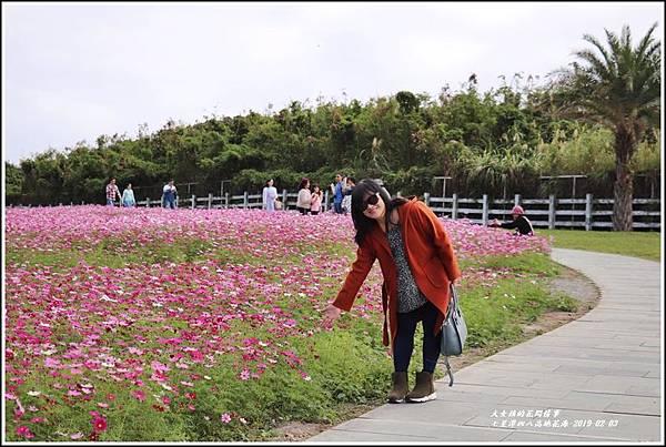 七星潭四八高地花海-2019-01-09.jpg