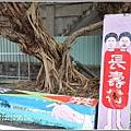 介壽新村花海-2019-02-01.jpg