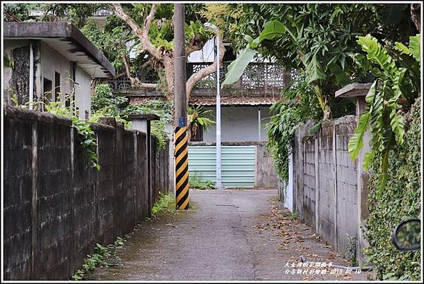 介壽新村彩繪牆-2019-02-14.jpg