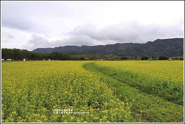 大農大富平地森林-2019-02-17.jpg