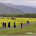 大農大富平地森林-2019-02-37.jpg