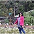 大同崙埤河濱櫻花公園-2019-02-39.jpg