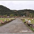 大同崙埤河濱櫻花公園-2019-02-54.jpg