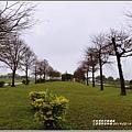 三星落羽松秘境-2019-02-01.jpg