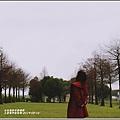 三星落羽松秘境-2019-02-03.jpg