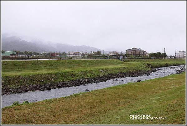 三星落羽松秘境-2019-02-07.jpg