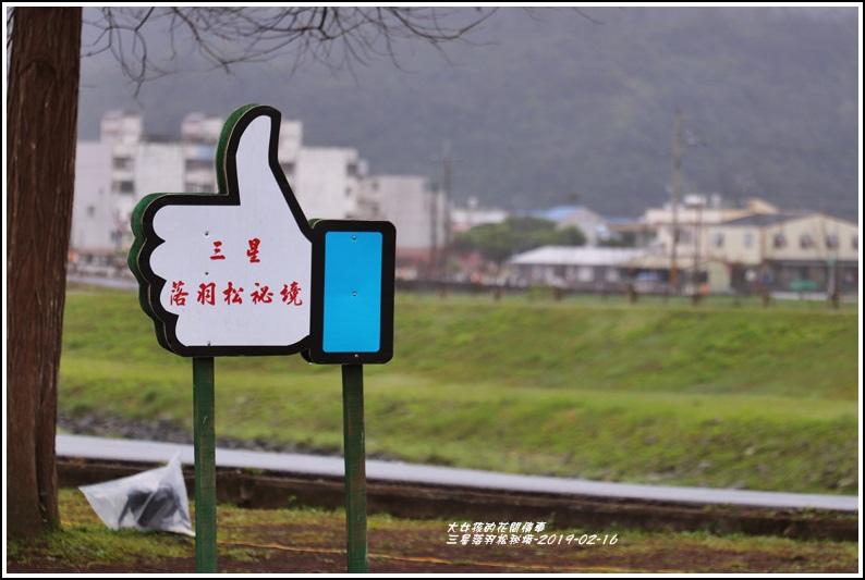 三星落羽松秘境-2019-02-21.jpg
