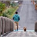 三星分洪堰-2019-02-27.jpg