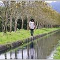 興泉圳(富源國中)黃花風鈴木-2019-02-25.jpg