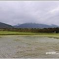 興泉圳(富源國中)黃花風鈴木-2019-02-38.jpg