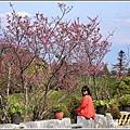 赤柯山櫻花-2019-03-46.jpg