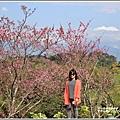 赤柯山櫻花-2019-03-48.jpg