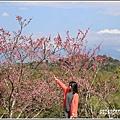 赤柯山櫻花-2019-03-49.jpg