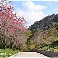 赤柯山櫻花-2019-03-75.jpg