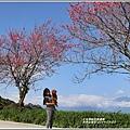 赤柯山櫻花-2019-03-83.jpg